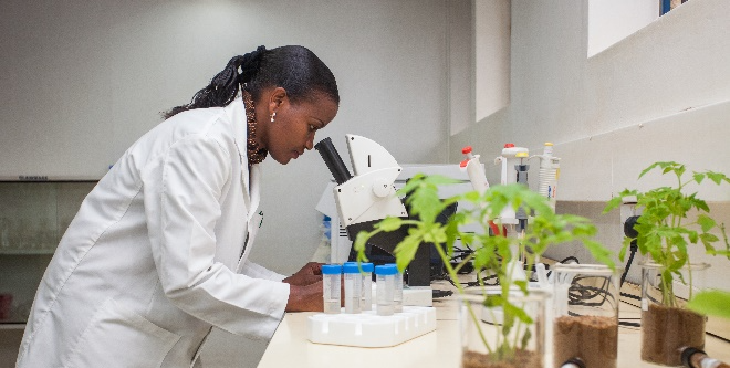 Woman looking into microscope with plants in foreground